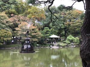 少し色ついた池の木々