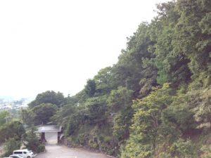 緑あふれるサウンドヒーリンスクールの会場の庭